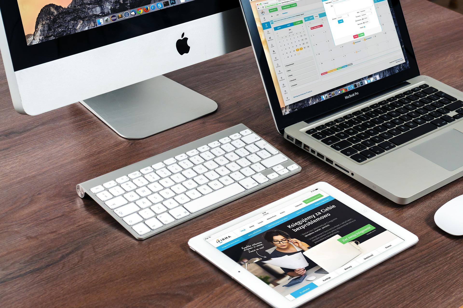 realizzazione e creazione siti web rovigo