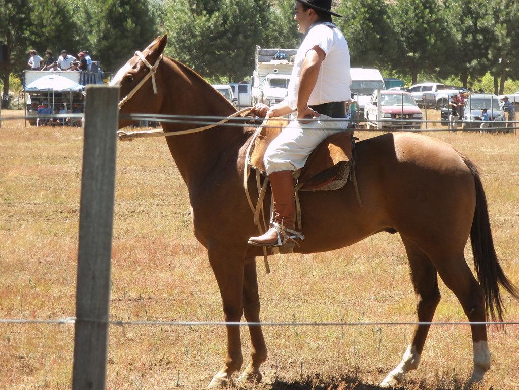 uomo-a-caballo-indigena-patagonia-viaggi