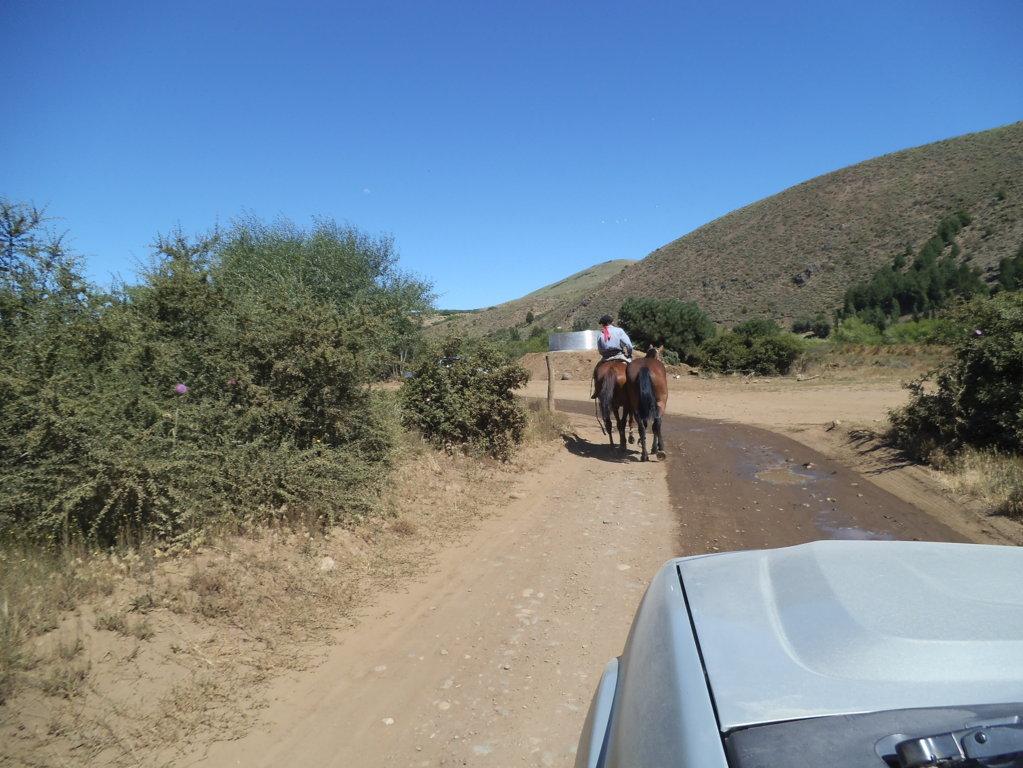 ruta-deserto-patagonia-traduzionispagnolo.com
