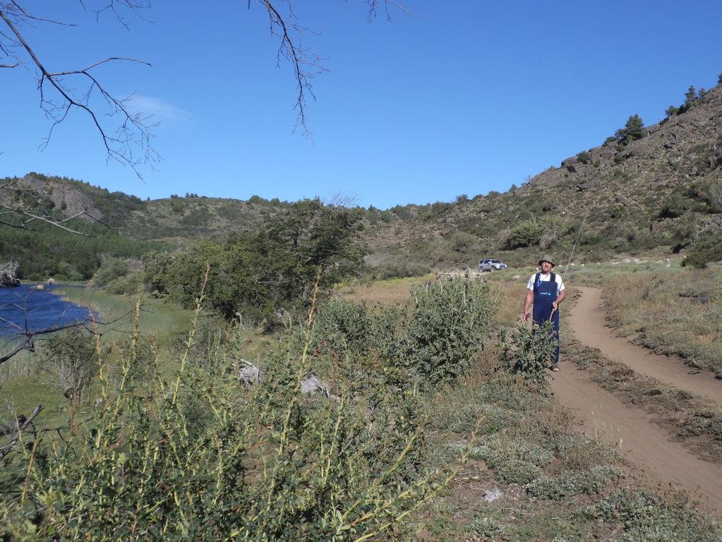 vegetación-patagónica-traduzione-spagnolo